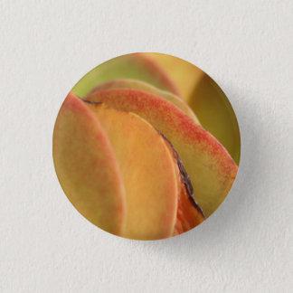Sunset Cactus Closeup pin