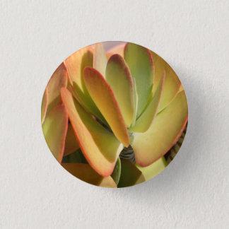 Sunset Cactus II pin