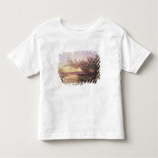 Sunset, Camargue Toddler T-Shirt