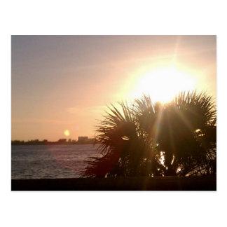 Sunset Celebration Postcard
