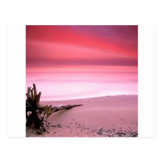 Sunset Chesapeake Bay Maryland Postcard