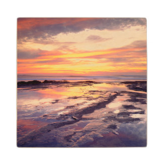 Sunset Cliffs tide pools Wood Coaster