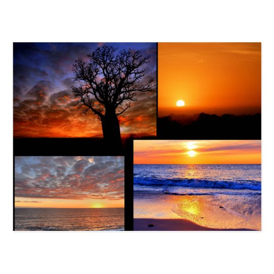 Sunset Collage Postcard
