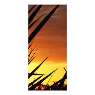 Sunset Custom Rack Card