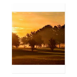 Sunset Golfers Dream Postcards