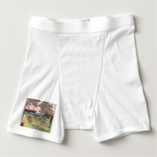 Sunset Hill, Meguro in the Eastern Capital. Boxer Briefs