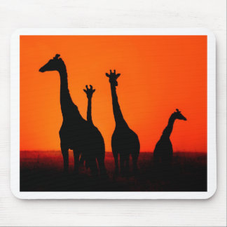 Sunset in Africa Mouse Mat