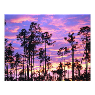 Sunset in Everglades National Park Florida U S A Flyers