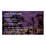 Sunset in Everglades National Park, Florida, U.S.A Pack Of Standard Business Cards