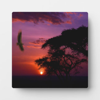 Sunset In Serengeti, Africa Display Plaques
