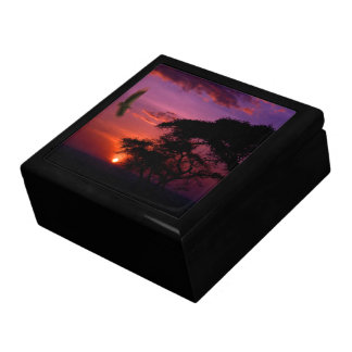 Sunset In Serengeti, Africa Gift Box