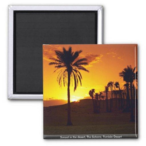 Sunset in the desert, The Sahara, Tunisia Desert Magnets