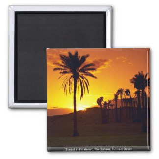 Sunset in the desert, The Sahara, Tunisia Desert Square Magnet