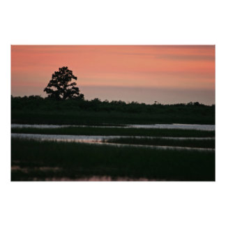 Sunset In The Wetlands Poster