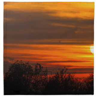 sunset in winter napkin