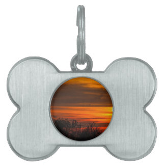 sunset in winter pet ID tag