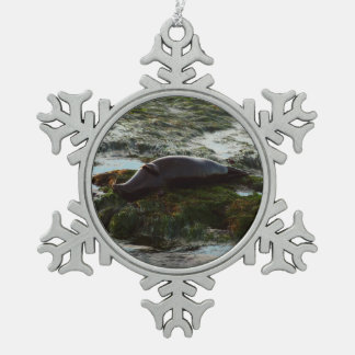 Sunset Lit Harbor Seal II at San Diego Snowflake Pewter Christmas Ornament