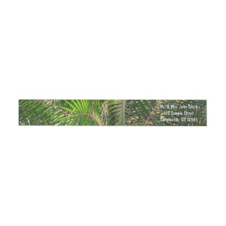 Sunset Lit Palm Fronds Wrap Around Label