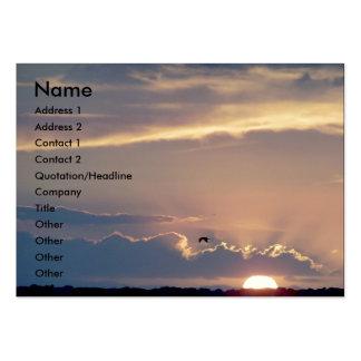 Sunset Ocean Beach Seagull Bird California Coast Pack Of Chubby Business Cards
