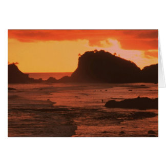 Sunset on a rocky coast greeting card