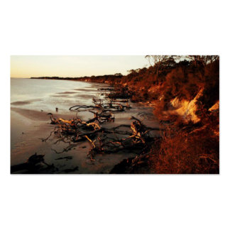 Sunset on Driftwood Pack Of Standard Business Cards