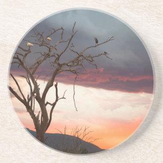 Sunset On Kandheri Swamp With African Spoonbills Coaster