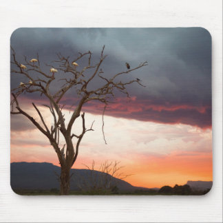Sunset On Kandheri Swamp With African Spoonbills Mouse Mat