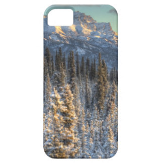 Sunset on Mount Fellows Barely There iPhone 5 Case