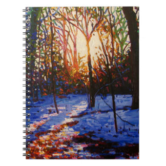 Sunset on snow 2010 notebook