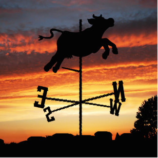 Sunset Over a Cow Weather Vane Photo Sculptures