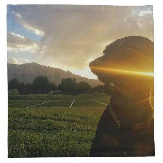 Sunset over Boulder Colorado Napkin