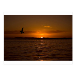 Sunset Over Burra Isle Postcard