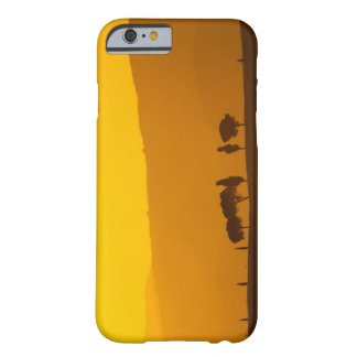 Sunset over cypress and pine trees in Val Barely There iPhone 6 Case