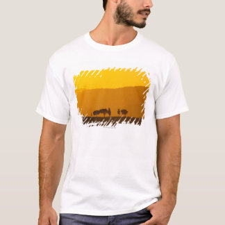 Sunset over cypress and pine trees in Val T-Shirt