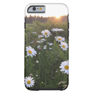 Sunset over Daisies Phone Case - Frost Hill Farms