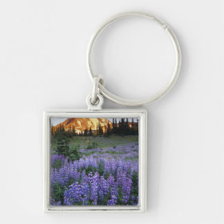 Sunset over Mt. Adams and a sub-alpine meadow Key Ring
