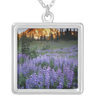Sunset over Mt. Adams and a sub-alpine meadow Silver Plated Necklace