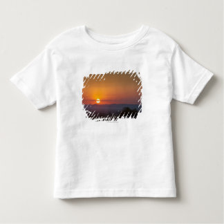 Sunset Over The African Landscape Toddler T-Shirt
