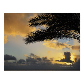 Sunset Over the Atlantic Ocean, Madeira, Postcard