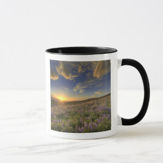 Sunset over the Bitterroot Mountains and vast Mug
