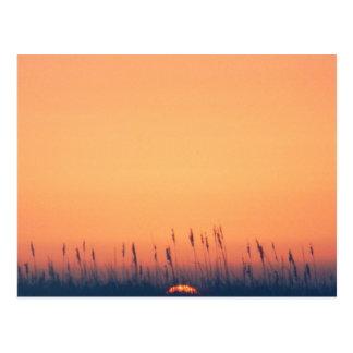 Sunset over the gulf postcard