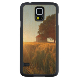 Sunset Over Wheat Field Maple Galaxy S5 Slim Case