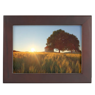 Sunset Over Wheat Field Memory Boxes