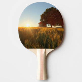 Sunset Over Wheat Field Ping Pong Paddle