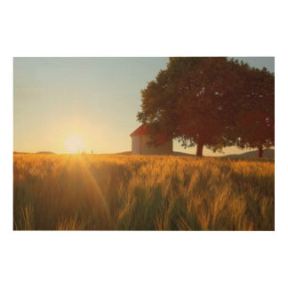 Sunset Over Wheat Field Wood Print