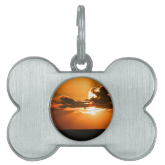sunset pet ID tag