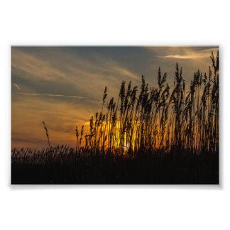 Sunset Photo Art