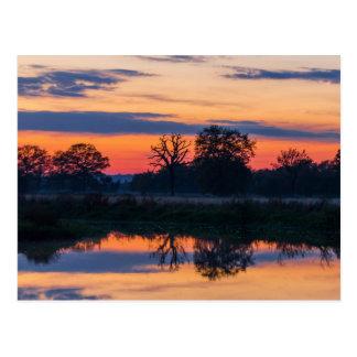 Sunset reflections postcard