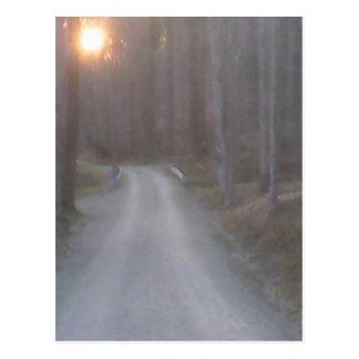 Sunset Road Postcard