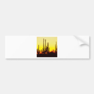 Sunset Saguaro Cactus At Bumper Sticker